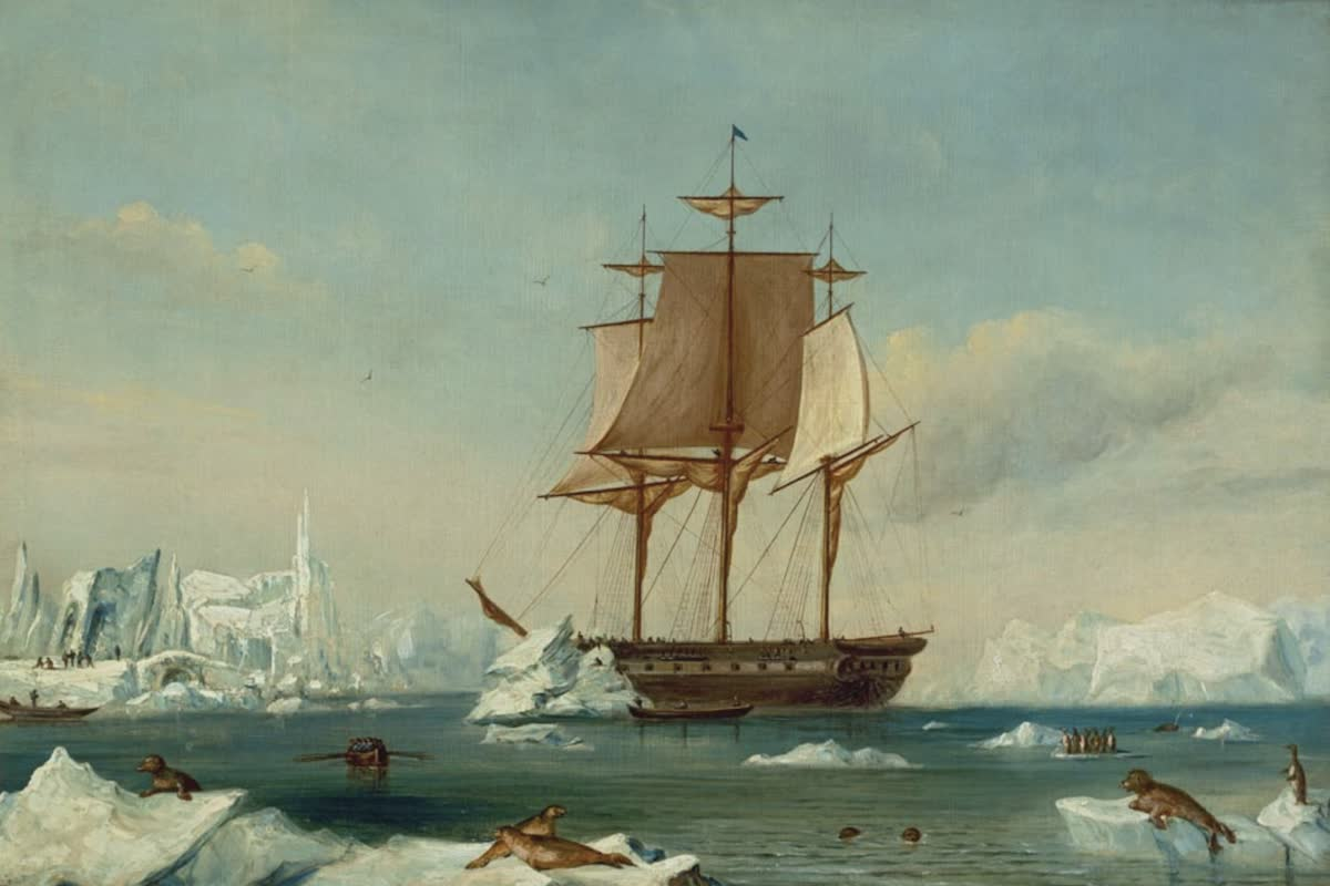 History Archive - Antarctica Collection