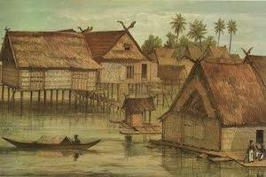 Collections - Borneo