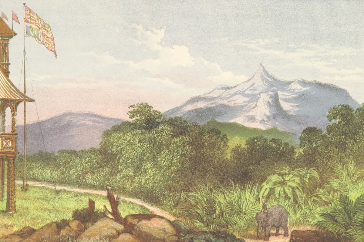 History Archive - Ceylon Collection