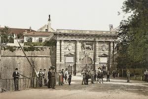 Collections - Dalmatia