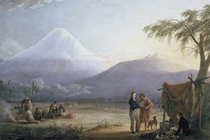 Collections - Ecuador