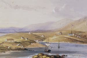 Collections - Falkland Islands