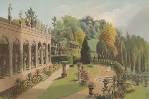 Collections - Gardens