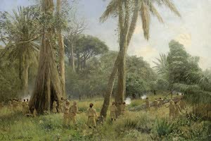 Collections - German East Africa
