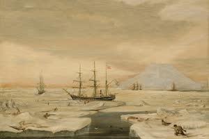 Collections - Jan Mayen