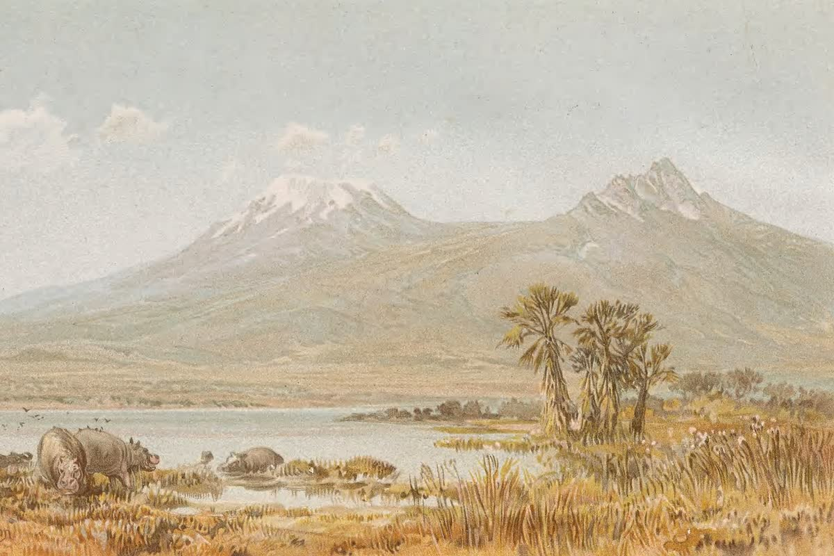 History Archive - Kilimanjaro Collection